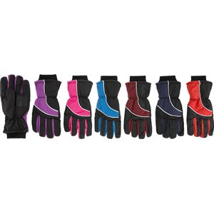 LADIES SKI GLOVES ASST